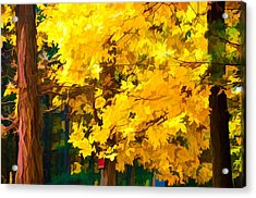 An Image Of A Tree With Bright Yellow Leaves Acrylic Print