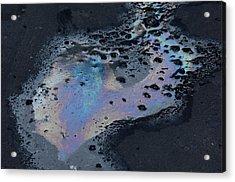 An Oil Slick On A Cobblestone Road Acrylic Print by Joel Sartore