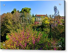 An Old House In Provence Acrylic Print by Olivier Le Queinec