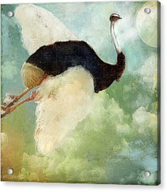 Anastasia's Ostrich Acrylic Print by Mindy Sommers