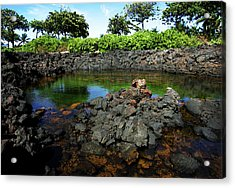 Acrylic Print featuring the photograph Anchialine Pond by Anthony Jones