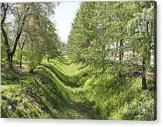 Ancient Ditch Acrylic Print by Evgeny Pisarev