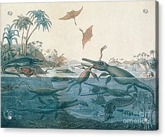Ancient Dorset Acrylic Print by Henry Thomas De La Beche