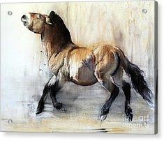 Ancient Horse Przewalski In Winter Acrylic Print