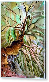 Ancient Roots Acrylic Print by Mindy Newman