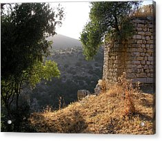 Ancient Ruins With An Older View Acrylic Print by Yonatan Frimer Maze Artist