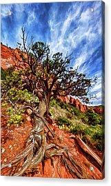 Acrylic Print featuring the photograph Ancient Wisdom by ABeautifulSky Photography