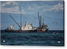 Acrylic Print featuring the photograph Kornat And Western Investor by Randy Hall