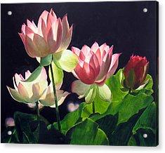Andrea's Lillies Acrylic Print by Marina Petro