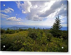 Andrews Bold Acrylic Print by Richard Steinberger