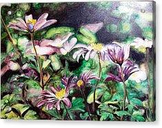 Anemones Japonaises Acrylic Print by Muriel Dolemieux