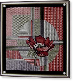 Anemonie Acrylic Print by Shirley Heyn
