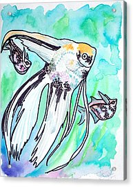 Angel Fish And Hatchet Tetras Acrylic Print
