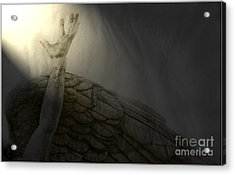 Acrylic Print featuring the photograph Angel Hand by Craig J Satterlee