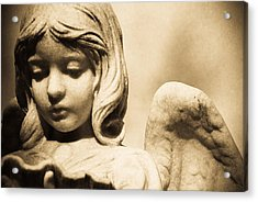 Angel Holding Clam Shell Acrylic Print by Diane Payne