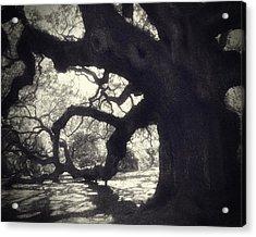 Angel II Acrylic Print by Amy Tyler