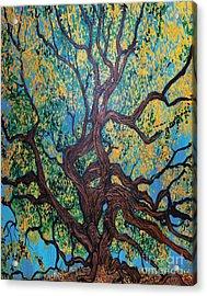 Angel Oak Young Acrylic Print
