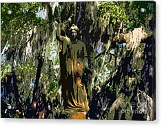 Angel Of Savannah Acrylic Print by David Lee Thompson