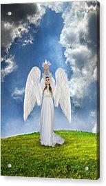 Angel Releasing A Dove Acrylic Print by Jill Battaglia