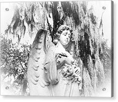 Angel Acrylic Print by Sabrina  Long