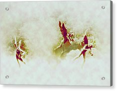 Angel Song Acrylic Print by Bill Cannon