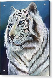 Acrylic Print featuring the painting Angel The White Tiger by Sherry Shipley