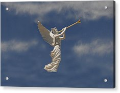 Angels Trumpet Acrylic Print by David Lee Thompson