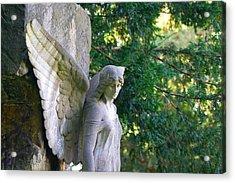 Angel's Wing Acrylic Print