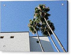 Angles And 3 Palm Tress Acrylic Print
