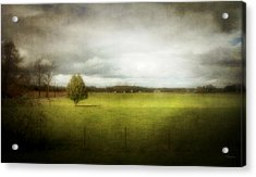 Angustown Pasture Acrylic Print by Cynthia Lassiter