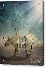 Animal House Acrylic Print by Juli Scalzi