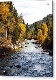 Acrylic Print featuring the photograph Animas River by Kurt Van Wagner