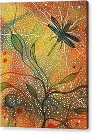Anisozygoptera Acrylic Print by Scott Harrington