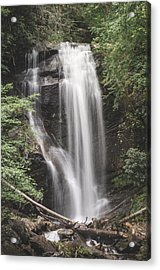 Anna Ruby Falls Acrylic Print by David Collins