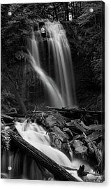 Anna Ruby Falls In Black And White Acrylic Print