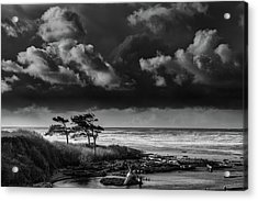 Acrylic Print featuring the photograph Another Day At Kalaloch Beach by Dan Mihai