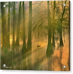 Another Day Acrylic Print by Tim Fitzharris