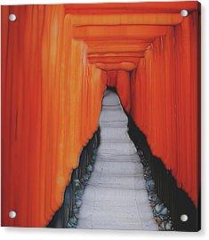 Another Way Acrylic Print by Jack Zulli