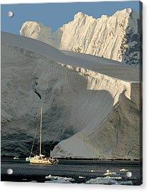 Antarctic No. 7 Acrylic Print by Joe Bonita