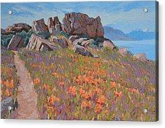 Antelope Island Outcrop Acrylic Print