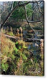 Antelope Springs Ix Acrylic Print by Ron Cline