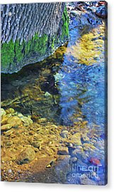 Antelope Springs Vii Acrylic Print by Ron Cline