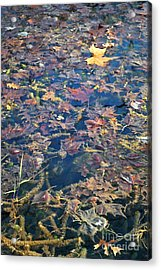 Antelope Springs Viii Acrylic Print by Ron Cline