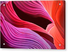 Antelope Waves Acrylic Print by Anni Adkins