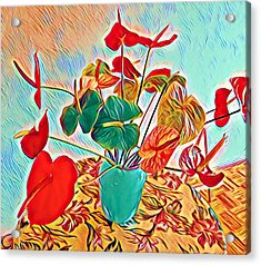Anthurium Bouquet Of The Day - Multiple Color Acrylic Print
