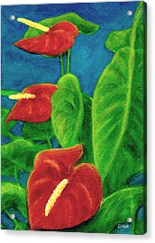 Anthurium Flowers #296 Acrylic Print by Donald k Hall