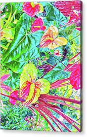 Anthuriums Pink And Turquoise Acrylic Print