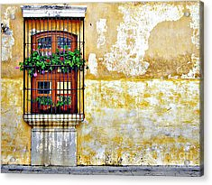 Antigua Window Acrylic Print