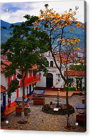 Acrylic Print featuring the photograph Antioquia by Skip Hunt