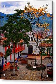 Antioquia Acrylic Print by Skip Hunt